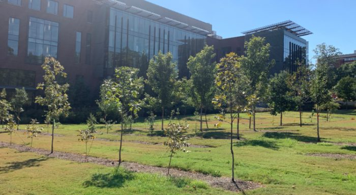 The award-winning Krone Engineered Biosystems Building at Georgia Tech (pictured) features plantings for a temporal forest like those indigenous to the Atlanta area.