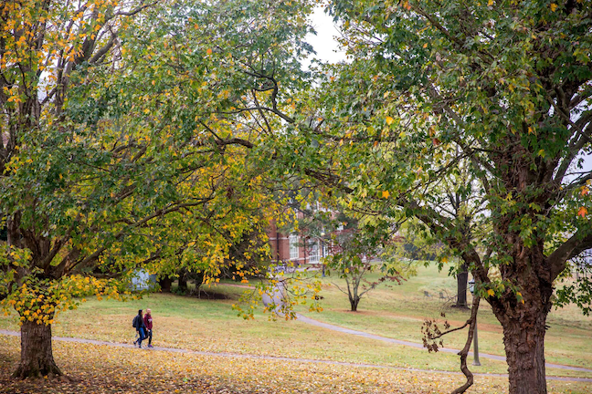 Sweet Briar College will the first higher ed institution in Virginia to open for the 2020-21 school year when in-person classes resume on Aug. 11.